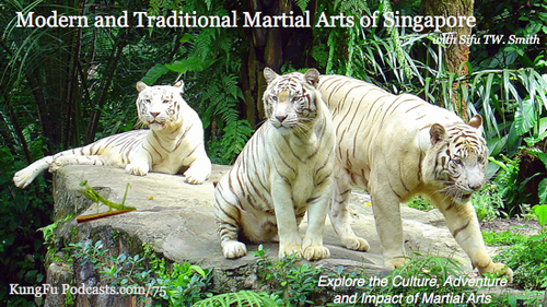 Traditional Martial Arts in Singapore